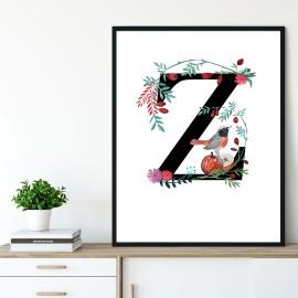 Litera Z z ilustracją